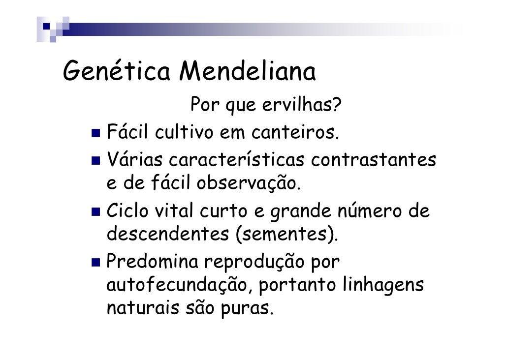 Genética Mendeliana             Por que ervilhas?   Fácil cultivo em canteiros.   Várias características contrastantes   e...