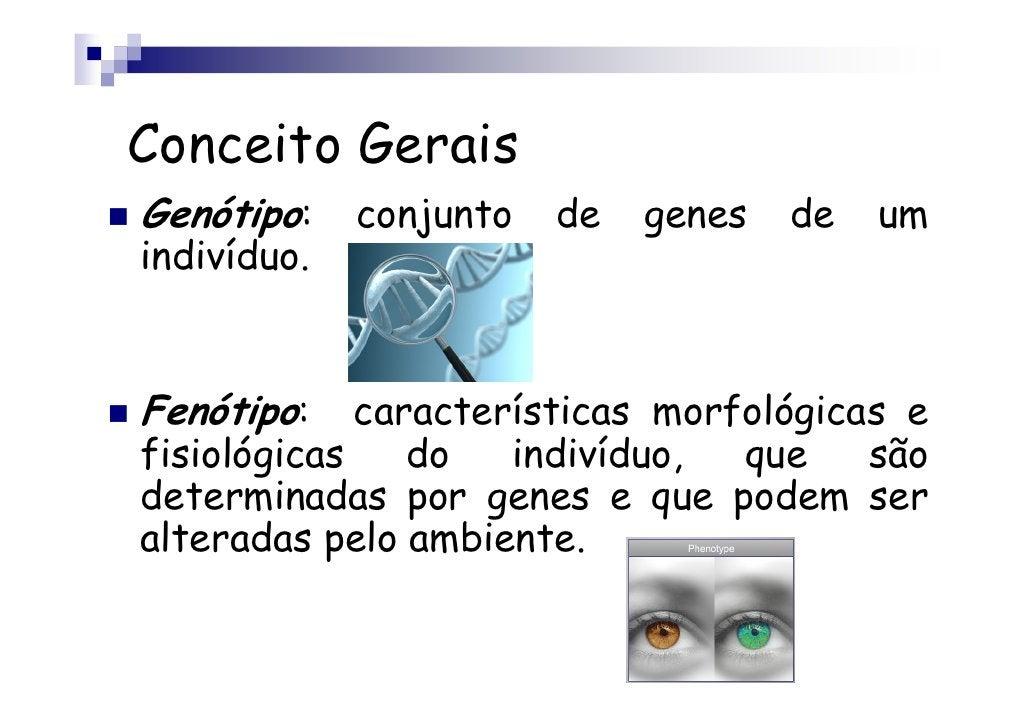 Conceito GeraisGenótipo:    conjunto   de   genes   de   umindivíduo.Fenótipo:    características morfológicas efisiológic...