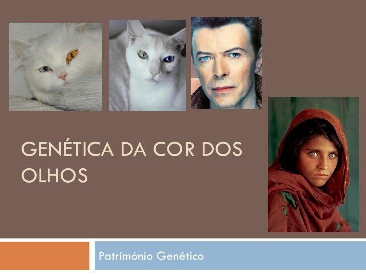 GENÉTICA DA COR DOS OLHOS         Património Genético