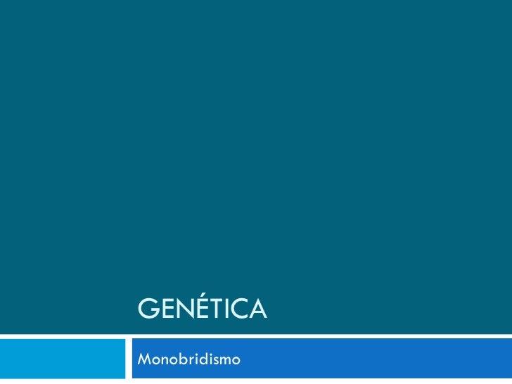 GENÉTICA Monobridismo