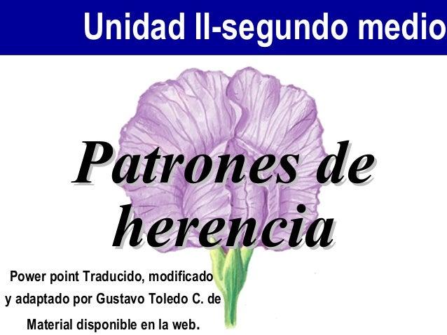 Unidad II-segundo medio Patrones dePatrones de herenciaherencia Power point Traducido, modificado y adaptado por Gustavo T...