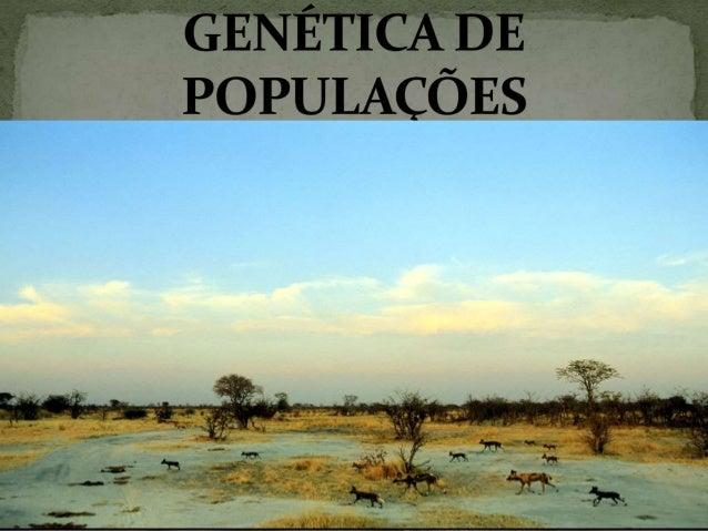  Mudanças da composição gênica de uma população ao longo das gerações;  Essas mudanças podem ser provocadas por fatores ...