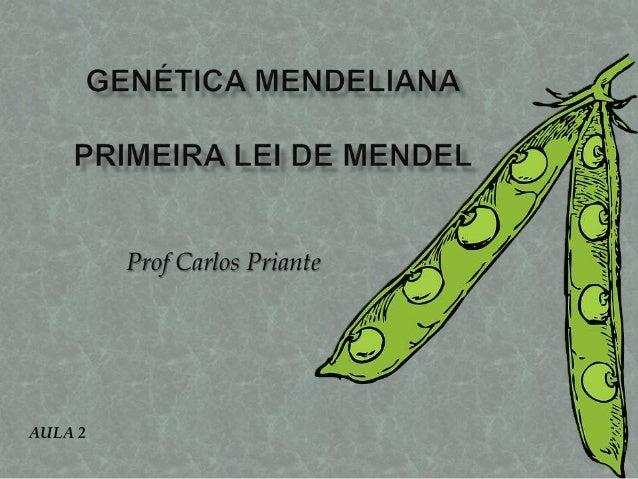 Prof Carlos Priante AULA 2