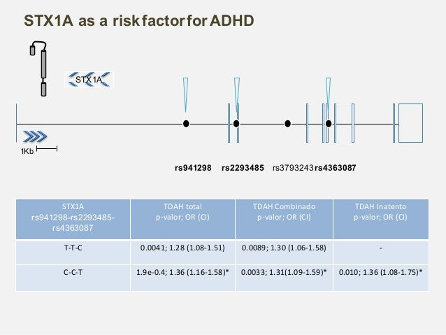 The association between NSF gene and SUD or STX1A with ADHD suggests the existence of a distinct genetic factors that aff...