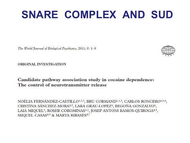 SNARE COMPLEX AND ADHD