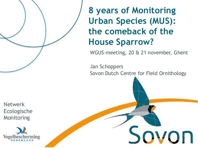 8 years of Monitoring Urban Species (MUS): the comeback of the House Sparrow? WGUS-meeting, 20 & 21 november, Ghent Jan Sc...