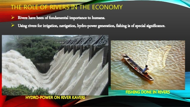  The growing domestic, industrial and agricultural demand for water from rivers affect the quality if water.  More and m...