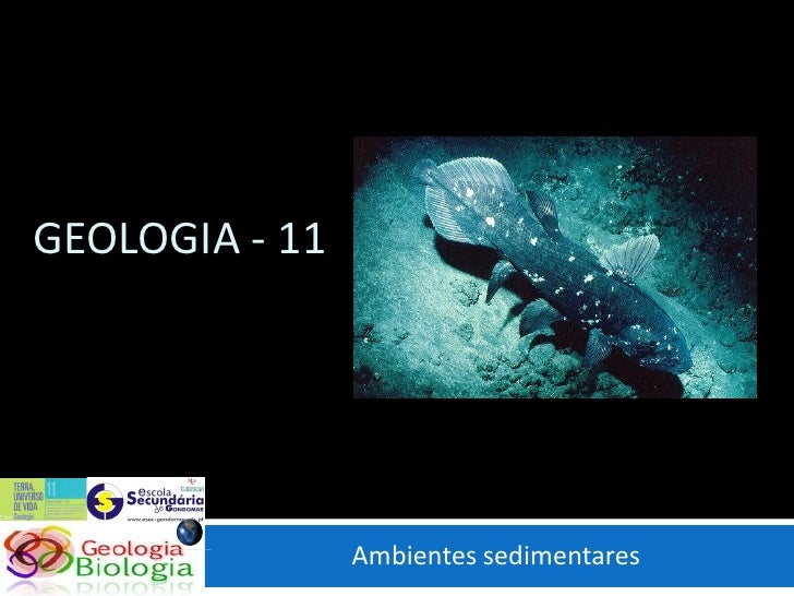 GEOLOGIA - 11                     Ambientes sedimentares