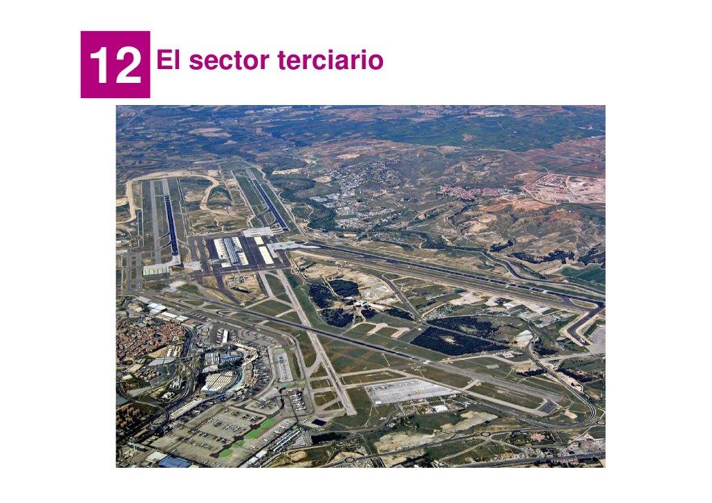 12   El sector terciario