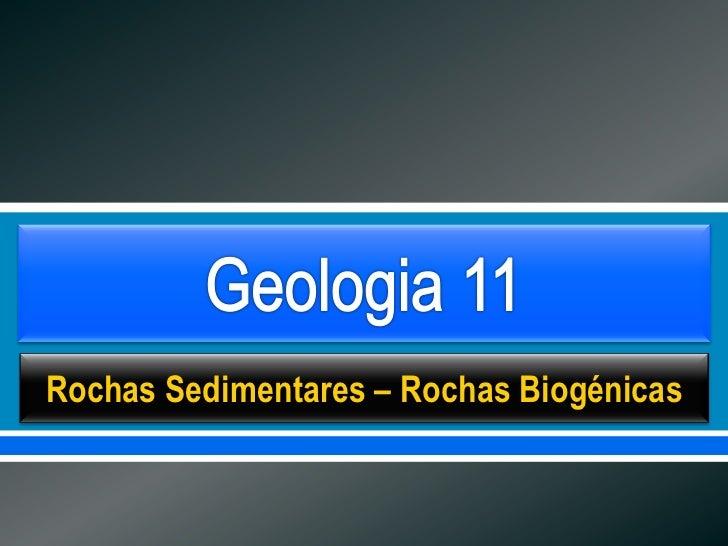      Rochas Sedimentares – Rochas Biogénicas
