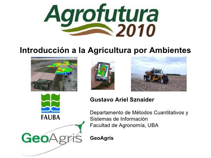 Introducción a la Agricultura por Ambientes Gustavo Ariel Sznaider Departamento de Métodos Cuantitativos y Sistemas de Inf...