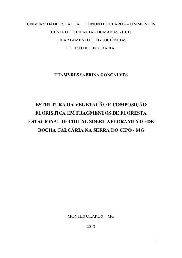 UNIVERSIDADE ESTADUAL DE MONTES CLAROS – UNIMONTES CENTRO DE CIÊNCIAS HUMANAS - CCH DEPARTAMENTO DE GEOCIÊNCIAS CURSO DE G...
