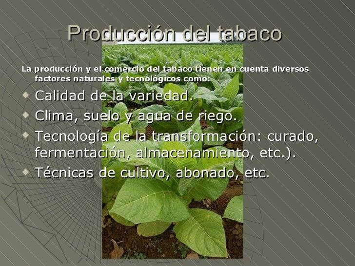 Circuito Productivo Del Algodon : Circuito productivo del tabaco y el algodon