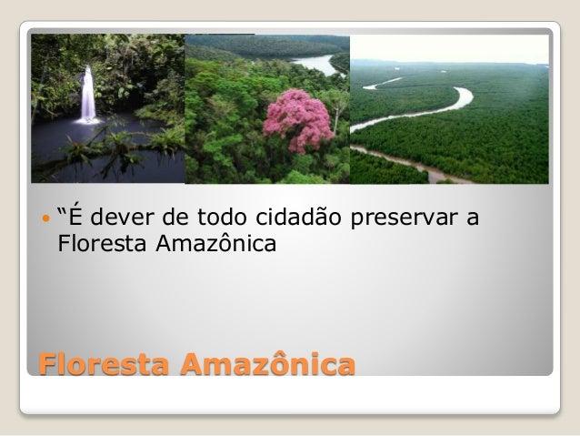"""Floresta Amazônica  """"É dever de todo cidadão preservar a Floresta Amazônica"""
