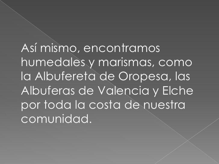 Así mismo, encontramos humedales y marismas, como  la Albufereta de Oropesa, las Albuferas de Valencia y Elche por toda la...