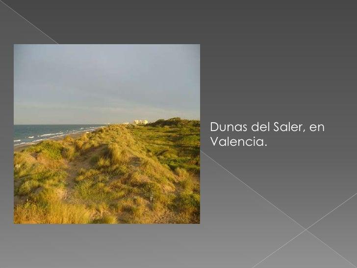 Dunas del Saler, en Valencia.<br />