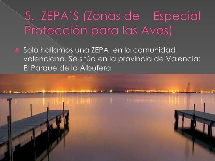 5.  ZEPA'S (Zonas de    Especial Protección para las Aves)<br />Solo hallamos una ZEPA  en la comunidad valenciana. Se sit...