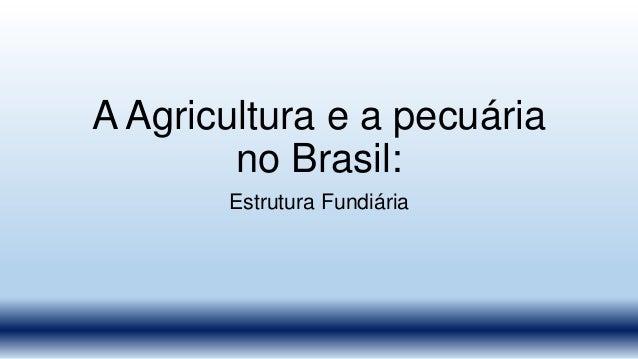 A Agricultura e a pecuária no Brasil: Estrutura Fundiária
