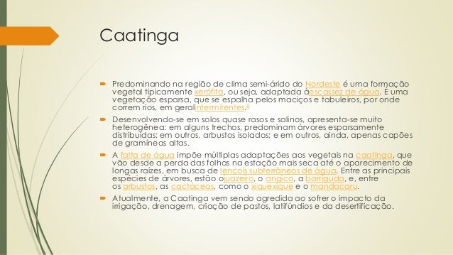 Caatinga  Predominando na região de clima semi-árido do Nordeste é uma formação vegetal tipicamente xerófita, ou seja, ad...