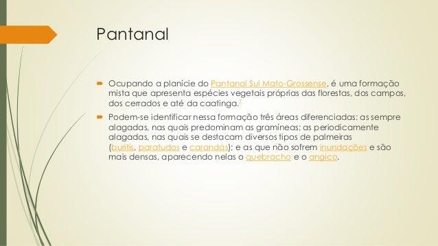 Pantanal  Ocupando a planície do Pantanal Sul Mato-Grossense, é uma formação mista que apresenta espécies vegetais própri...