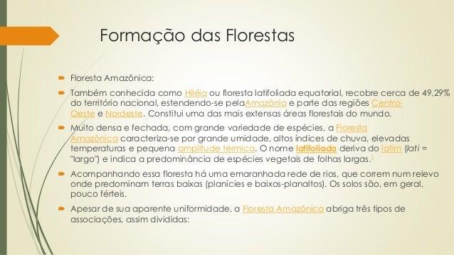 Formação das Florestas  Floresta Amazônica:  Também conhecida como Hiléia ou floresta latifoliada equatorial, recobre ce...