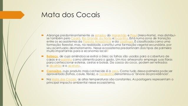 Mata dos Cocais  Abrange predominantemente os estados do Maranhão e Piauí (Meio-Norte), mas distribui- se também pelo Cea...