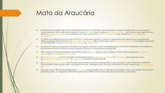 Mata da Araucária  Predomina em regiões de clima subtropical e tropical de altitude, que apresentam regular distribuição ...