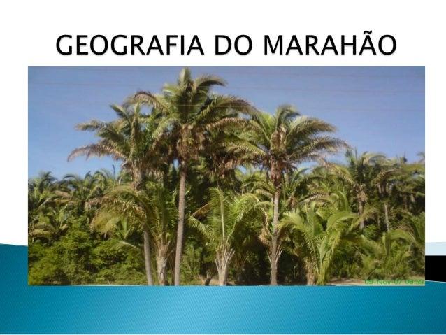   O maranhão esta localizado na região Nordeste do Brasil. limita -se com os estado do Pará (a oeste), Tocantins (a sudoe...