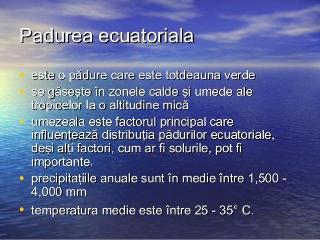 Geografie padurea ecuatoriala Slide 2