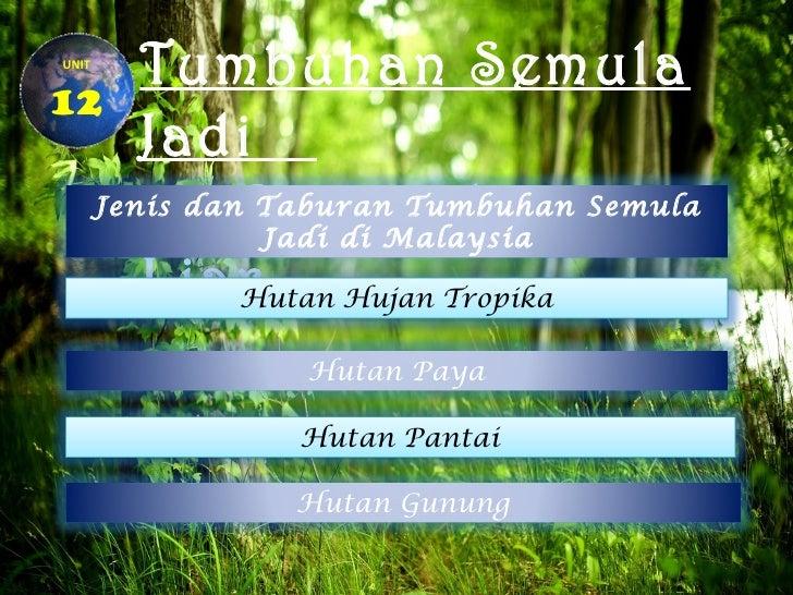 UNIT     Tumbuhan Semula12     Jadi  Jenis danDan Hidupan            Taburan Tumbuhan Semula            Jadi di Malaysia  ...