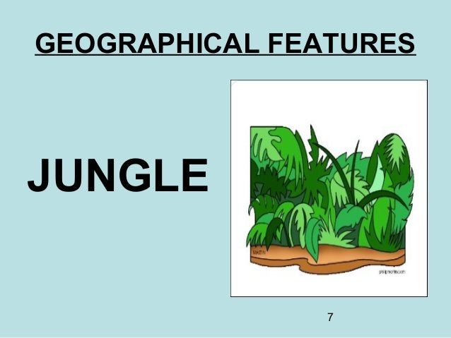 7 GEOGRAPHICAL FEATURES JUNGLE