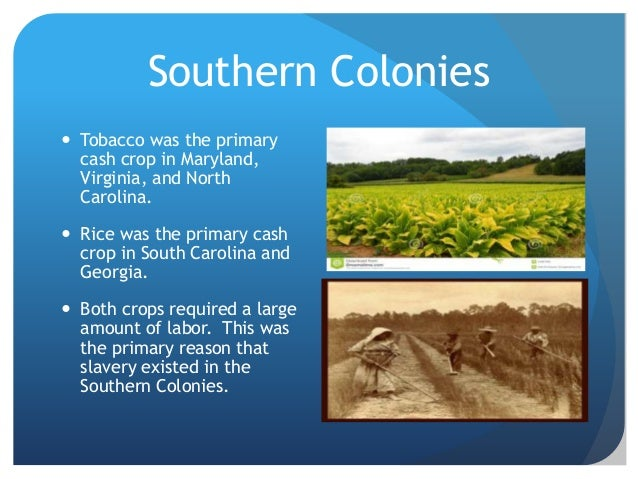 Natural Resources Southern Colonies