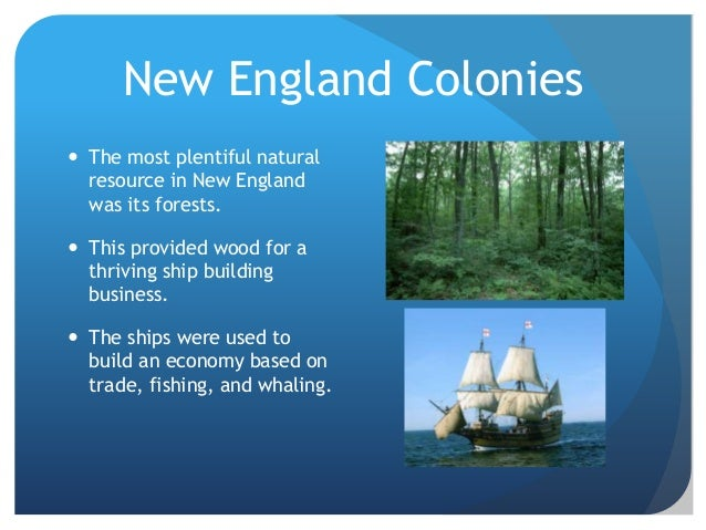 Food And Natural Resources In Colonial New Jersey
