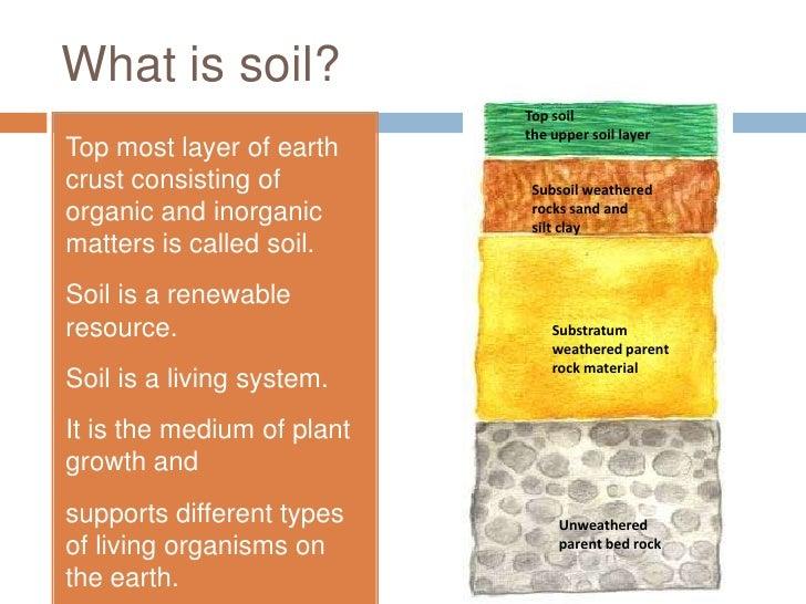 Soil for Explain soil