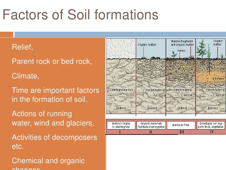 soil formation essay Soil formation, or pedogenesis, is the combined effect of physical, chemical,  biological and anthropogenic processes working on soil.