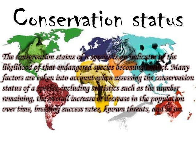 Image result for conservation status