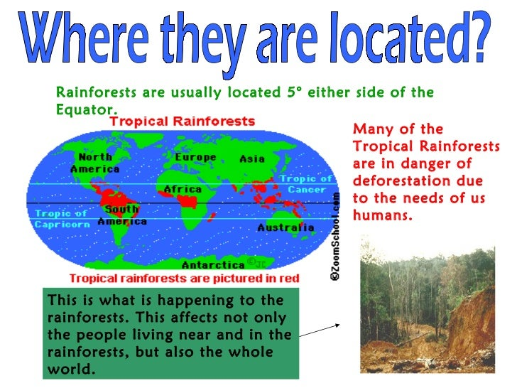 Geography presentation-Tropical Rainforests