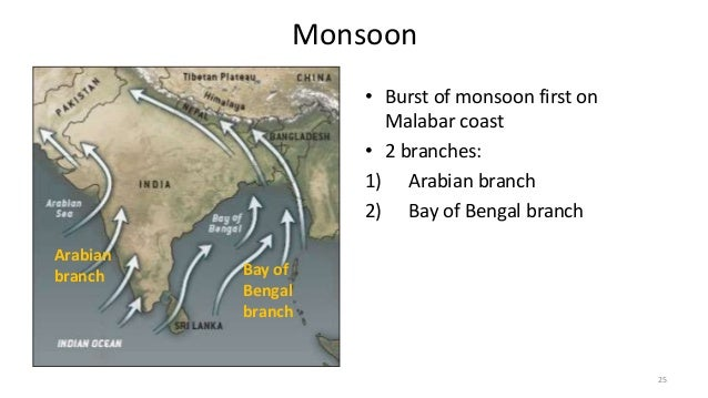 monsoon branches