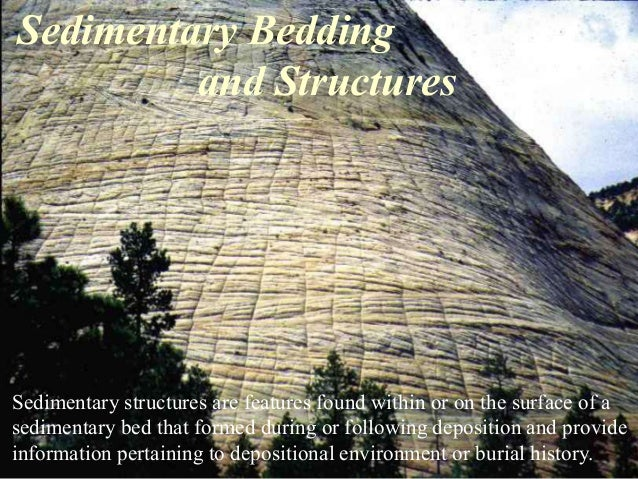 Sedimentary Bedding and Structures Sedimentary structures are features found within or on the surface of a sedimentary bed...