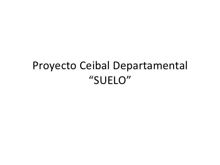 """Proyecto Ceibal Departamental          """"SUELO"""""""
