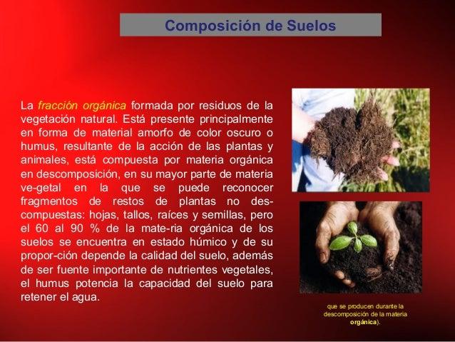Composición de Suelos La fracción orgánica formada por residuos de la vegetación natural. Está presente principalmente en ...
