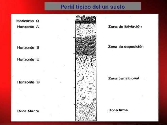 Perfil típico del un suelo
