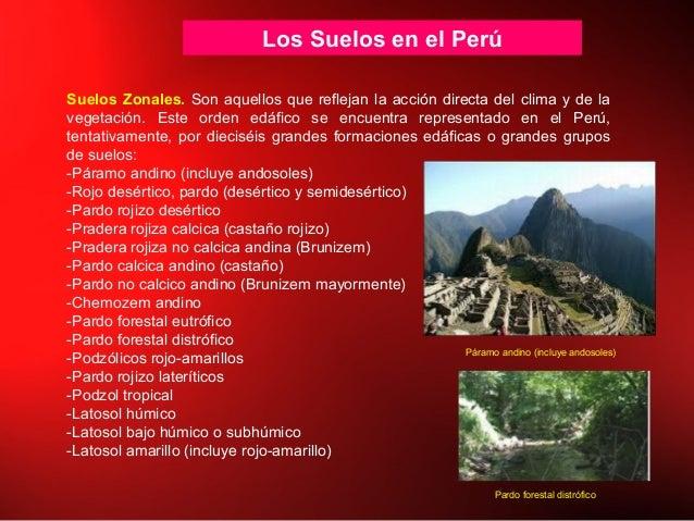 Los Suelos en el Perú Suelos Zonales. Son aquellos que reflejan la acción directa del clima y de la vegetación. Este orden...
