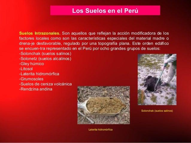 Los Suelos en el Perú Suelos Intrazonales. Son aquellos que reflejan la acción modificadora de los factores locales como s...