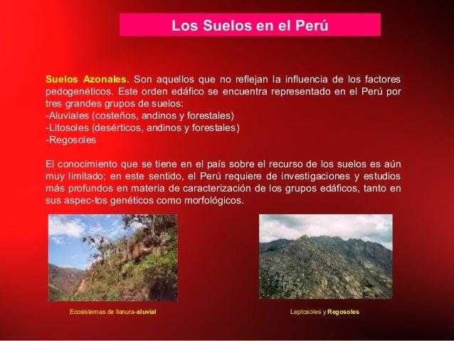 Los Suelos en el Perú Suelos Azonales. Son aquellos que no reflejan la influencia de los factores pedogenéticos. Este orde...