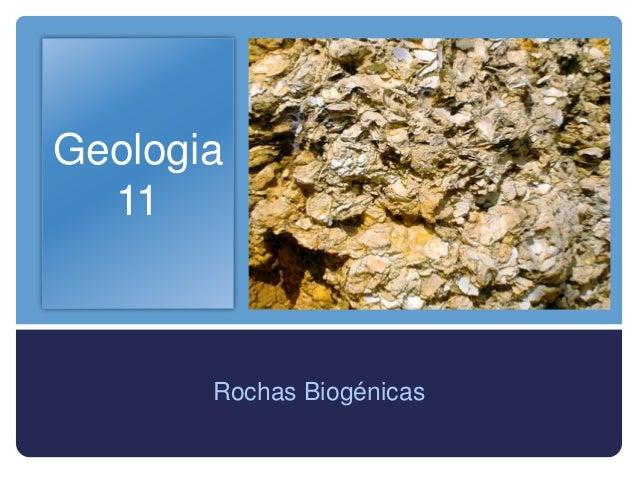 Geologia  11       Rochas Biogénicas