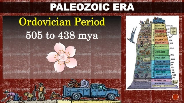 PALEOZOIC ERA  Ordovician Period  505 to 438 mya