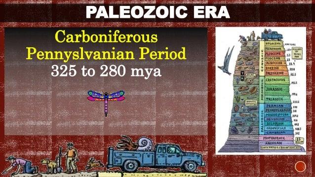PALEOZOIC ERA  Carboniferous  Pennyslvanian Period  325 to 280 mya