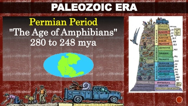 "PALEOZOIC ERA  Permian Period  ""The Age of Amphibians""  280 to 248 mya"