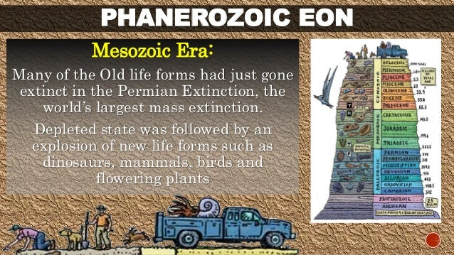 PHANEROZOIC EON  Mesozoic Era:  Many of the Old life forms had just gone  extinct in the Permian Extinction, the  world's ...